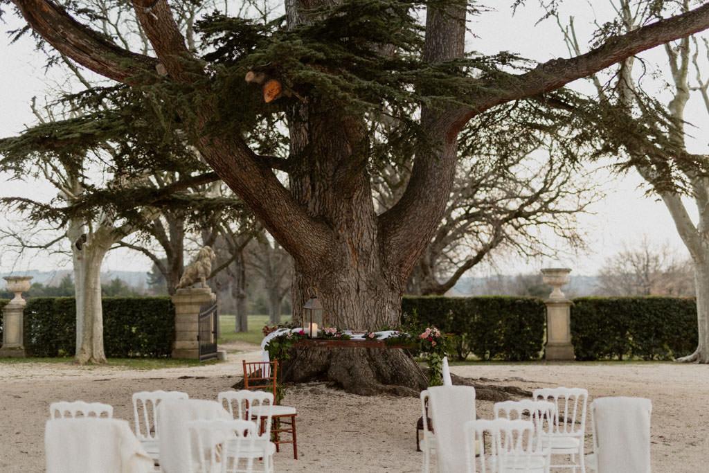 Une cérémonie laïque sous un cèdre du Liiban centenaire en Provence